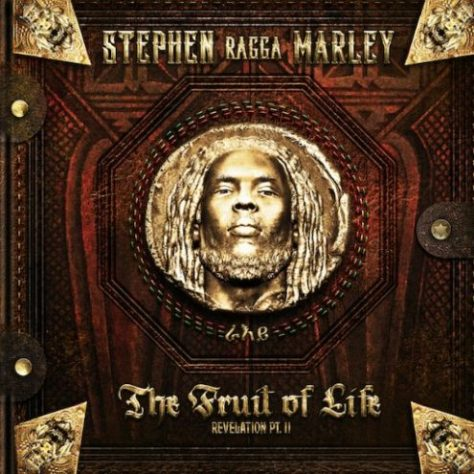 Stephen-Marley-ft-Iggy-Azalea-Waka-and-DJ-Khaled-Tonight-495x495.jpg